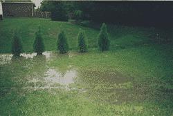Backyard Flooding Breeds Frustration for Homeowner in ...